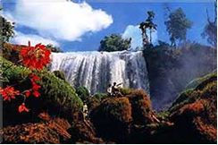MTV8: Dalat Tour Package 4 days
