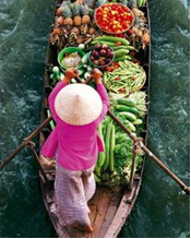 SE1: Mekong Delta - Caibe Floating market 1 day